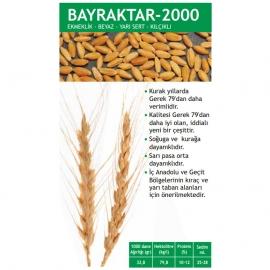 Bayraktar 2000